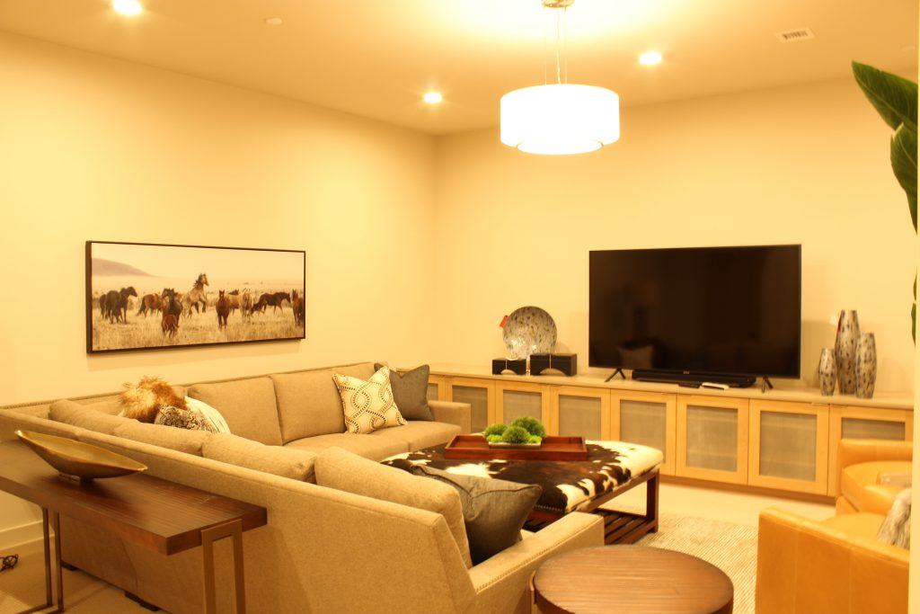 Entertainment Room 01